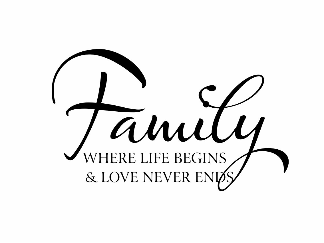 essay on various functions of the family Spanish